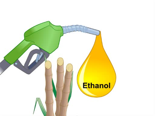 Biofuels: Producing Ethanol from Cellulosic Material