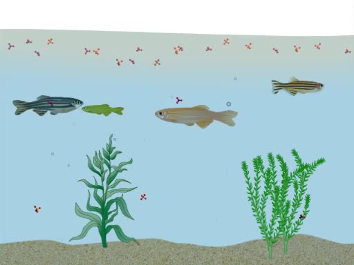 Nutrients in Aquatic Ecosystems