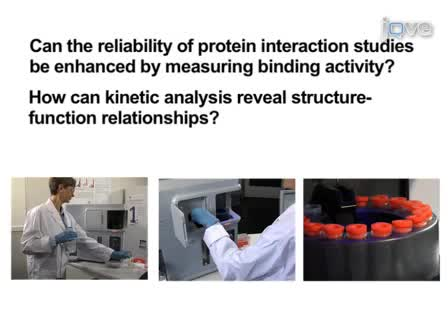 The Importance of Correct Protein Concentration for Kinetics and Affinity Determination in Structure-function Analysis