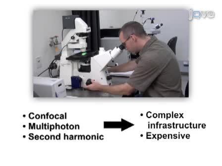 High-resolution Fiber-optic Microendoscopy for <em>in situ</em> Cellular Imaging
