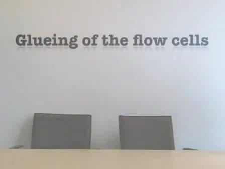<em>Pseudomonas aeruginosa</em> and <em>Saccharomyces cerevisiae</em> Biofilm in Flow Cells