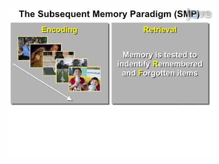 Brain Imaging Investigation of the Memory-Enhancing Effect of Emotion