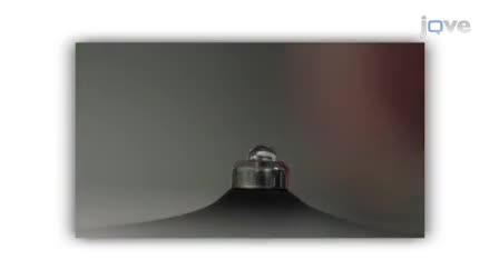 NanoDrop microvolume quantification des acides nucléiques