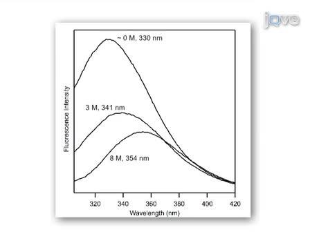 Thermodynamics of Membrane Protein Folding Measured by Fluorescence Spectroscopy