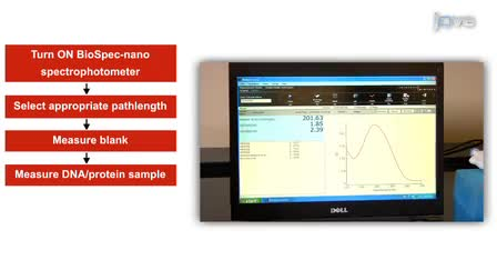 Concentratie Bepaling van nucleïnezuren en eiwitten Met behulp van de Micro-volume Bio-spec Nano Spectrophotometer