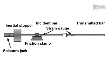 Impulsive Pressurization of Neuronal Cells for Traumatic Brain Injury Study