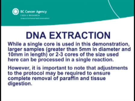 DNA Extraction from Paraffin Embedded Material for Genetic and Epigenetic Analyses