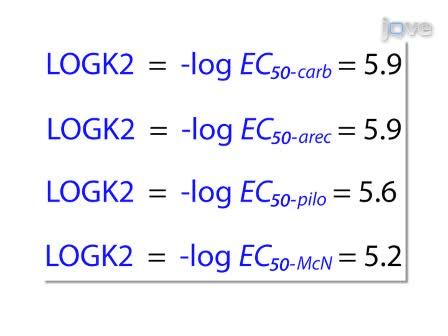 Kvantificering agonistaktivitet på G-protein-koblede receptorer