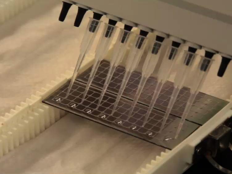 Kompleks Örnekleri spesifik protein Glikozilasyon arasında Multiplexed Yüksek verim Profilleme için Kimyasal-bloke Antikor Mikroarray