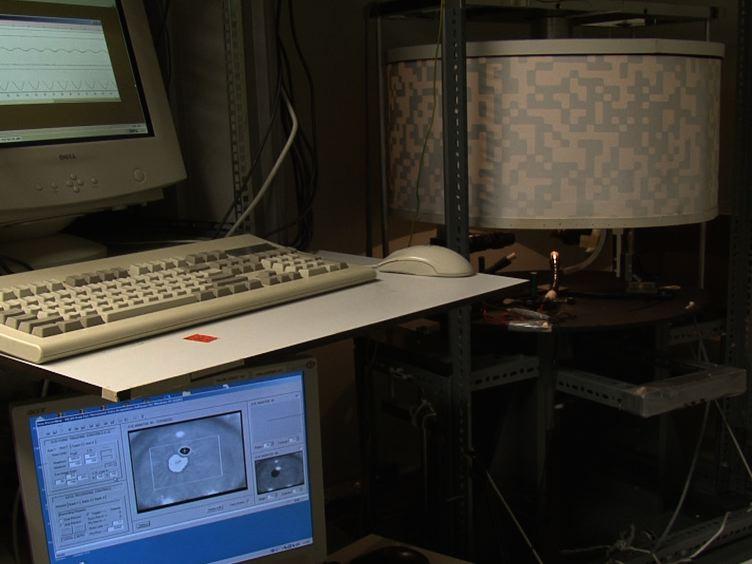 マウスのビデオ眼球運動記録法