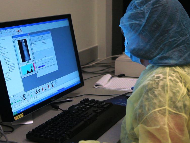 Funktionelle Bildgebung Brown Fat in Mäusen mit FDG micro-PET/CT