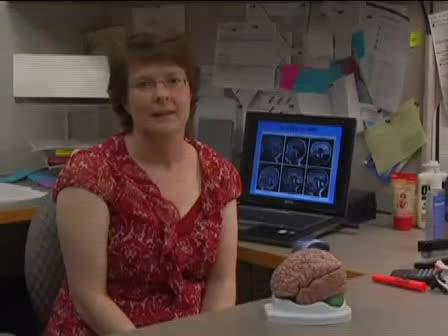 Understanding Cerebellar Pattern Formation