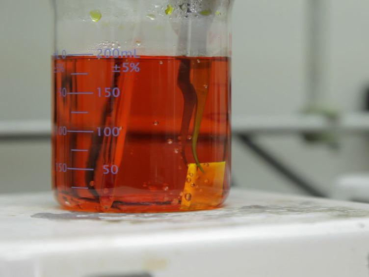 任意の基板上の垂直配向小分子有機ナノワイヤーの超高密度アレイ