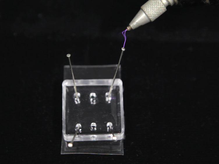 Udarbejdelse af neuronale Co-kulturer med Single Cell Precision