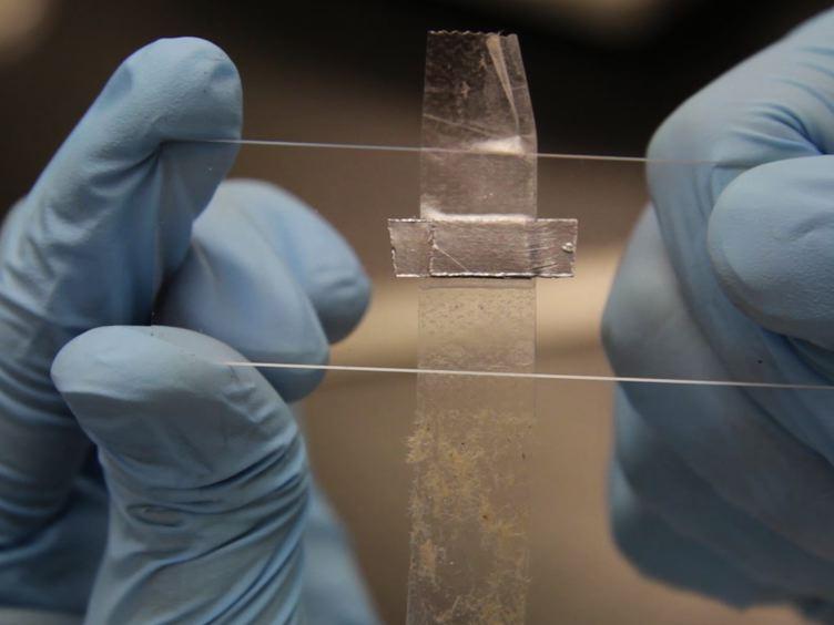 Développement d'un périphérique 3D graphène électrode diélectrophorétiques