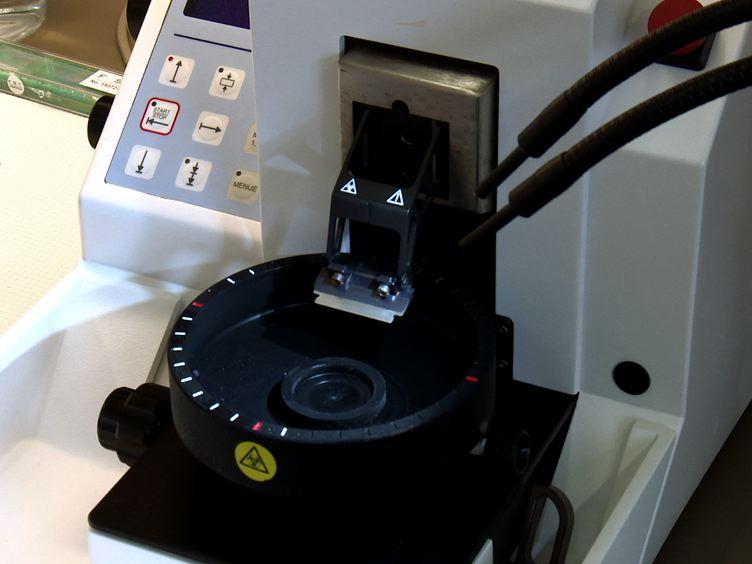Multi-foton Intracellulær Natrium Imaging Kombineret med UV-medieret Focal Uncaging af glutamat i CA1 pyramideneuroner