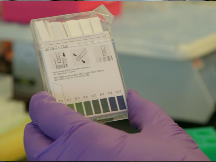 Harnessing the Bioorthogonal Inverse Electron Demand Diels-Alder Cycloaddition for Pretargeted PET Imaging