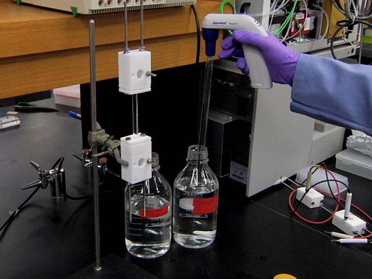 CN-GELFrEE - Clear Native Gel-eluted Liquid Fraction Entrapment Electrophoresis