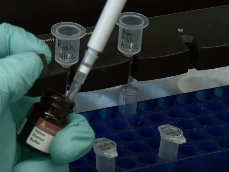 Screening for Functional Non-coding Genetic Variants Using Electrophoretic Mobility Shift Assay (EMSA) and DNA-affinity Precipitation Assay (DAPA)