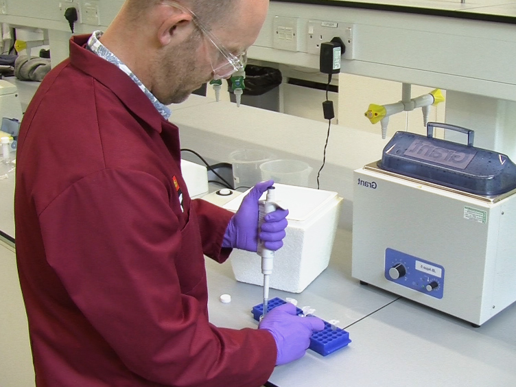 Measuring Lactase Enzymatic Activity in the Teaching Lab