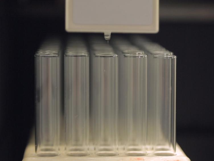 Preparation and <em>In Vivo</em> Use of an Activity-based Probe for <em>N</em>-acylethanolamine Acid Amidase
