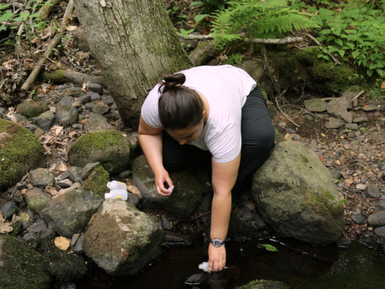 Understanding Dissolved Organic Matter Biogeochemistry Through <em>In Situ</em> Nutrient Manipulations in Stream Ecosystems