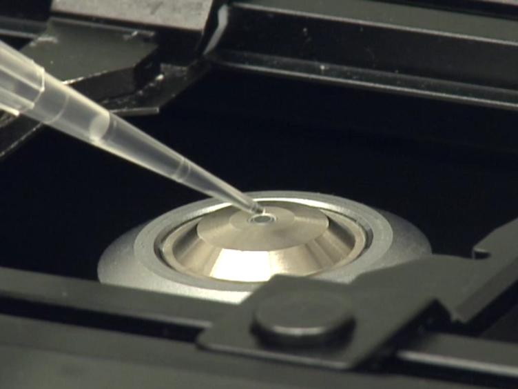דיפוזיה מולקולרית פלזמה ממברנות יסודי לימפוציטים נמדד באמצעות מתאם ספקטרוסקופיה פלואורסצנטי
