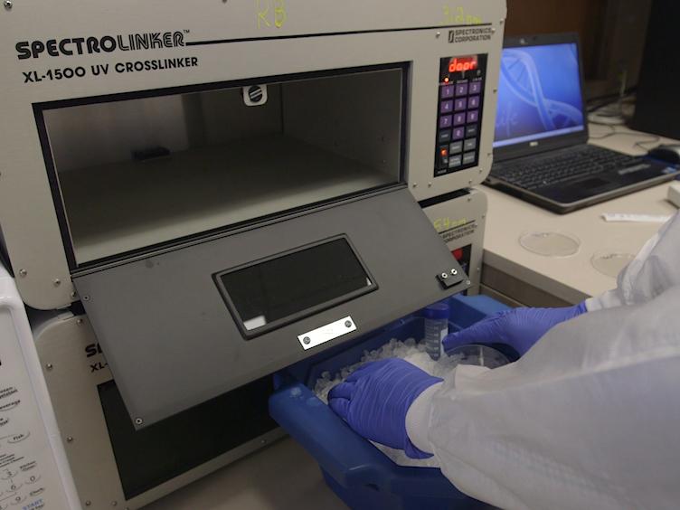 Sample Preparation for Mass Spectrometry-based Identification of RNA-binding Regions