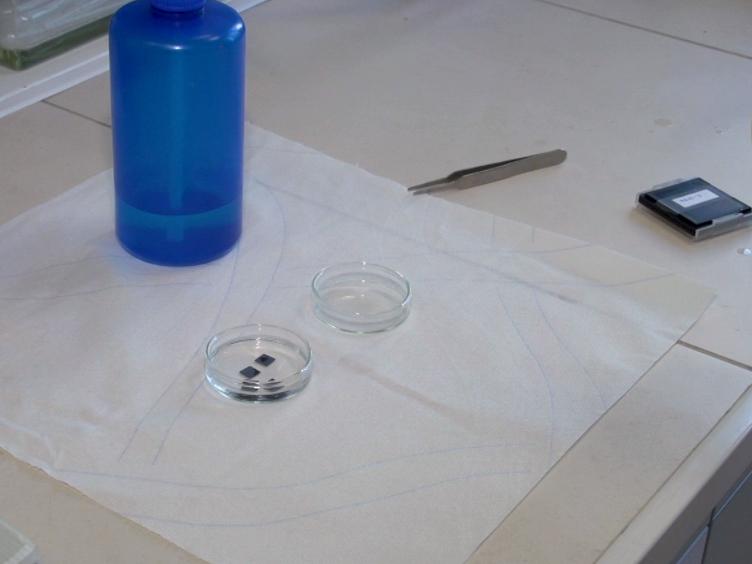 Aerosol-assisted Chemical Vapor Deposition of Metal Oxide Structures: Zinc Oxide Rods