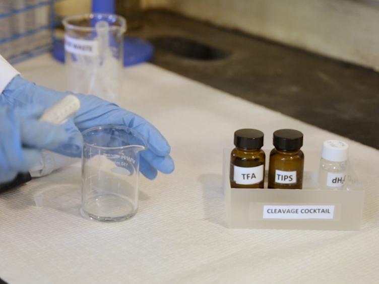 Synthesis and Mass Spectrometry Analysis of Oligo-peptoids