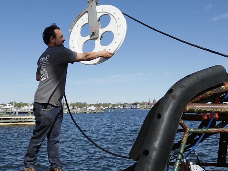 שיטות מבוססות-תמונה סקרים Macroinvertebrates בנתיק ואת הגידול שלהם כשניסחתי את הסקר המצלמה טיפה על צדפת הים האטלנטי