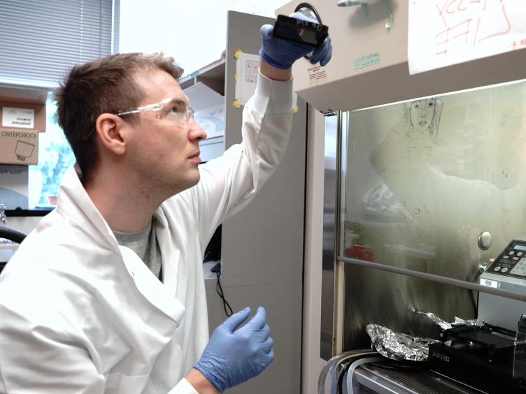 Een High-throughput, High-inhoud, vloeistof gebaseerde <em>C. elegans</em> Pathosystem