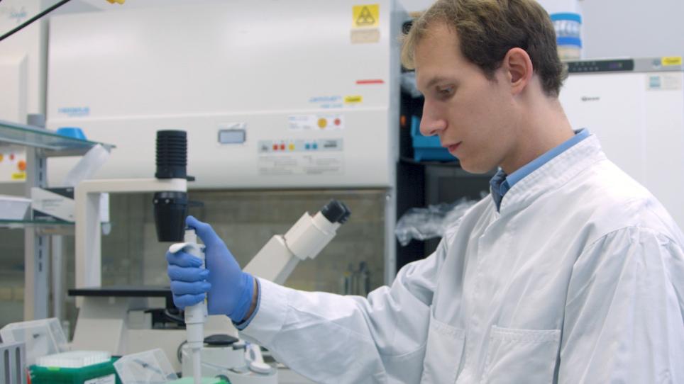 En Chromatin Immunoprecipitation analysen identifisere romanen NFAT2 målet gener i kronisk lymfatisk leukemi
