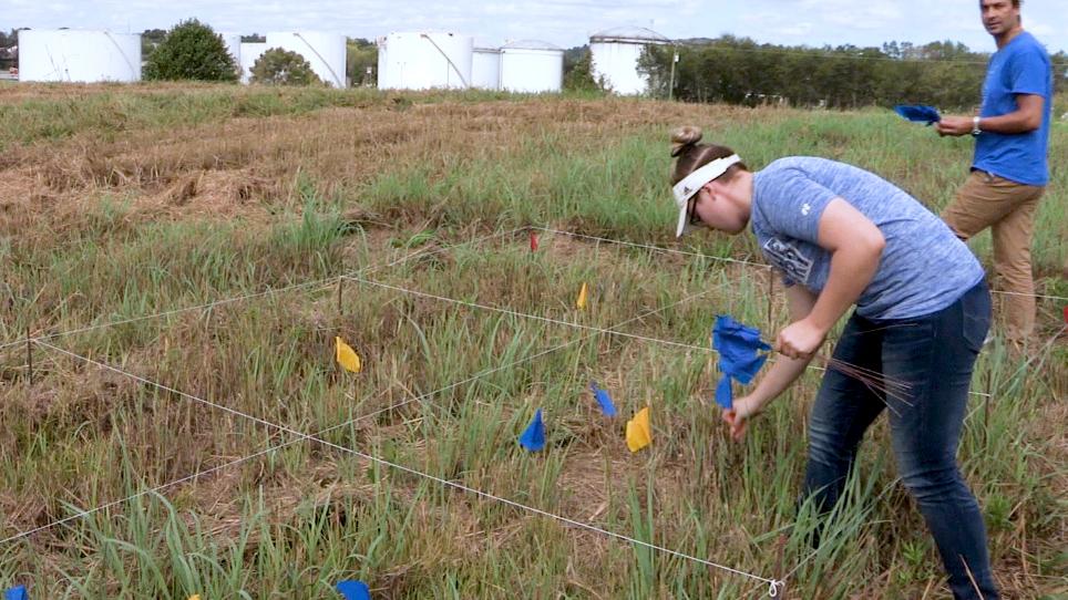 Échantillonnage des sols dans une recherche hétérogène tracer