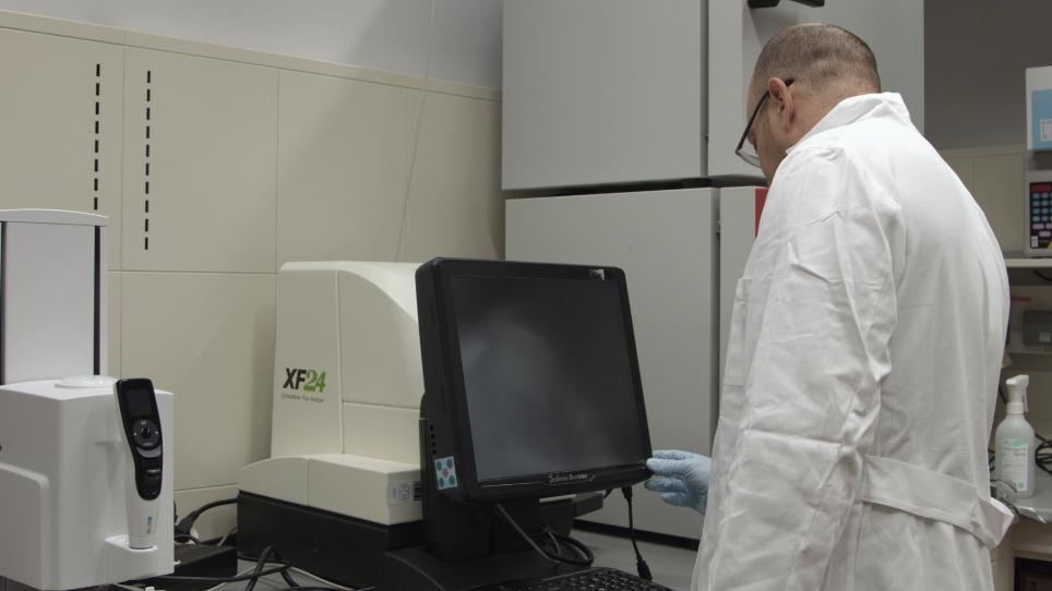 測定と酸素消費量全体の解釈飛ぶ頭セグメント