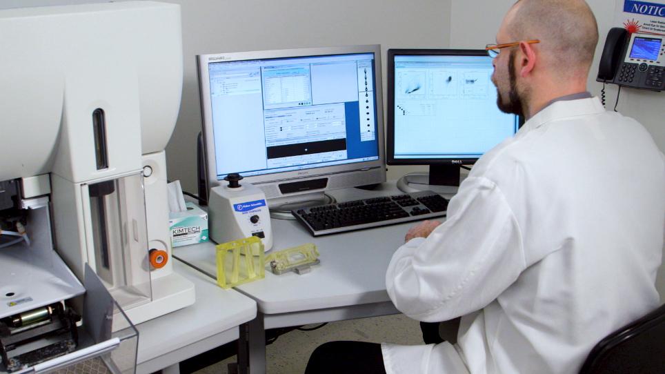 Preparation and Gene Modification of Nonhuman Primate Hematopoietic Stem and Progenitor Cells
