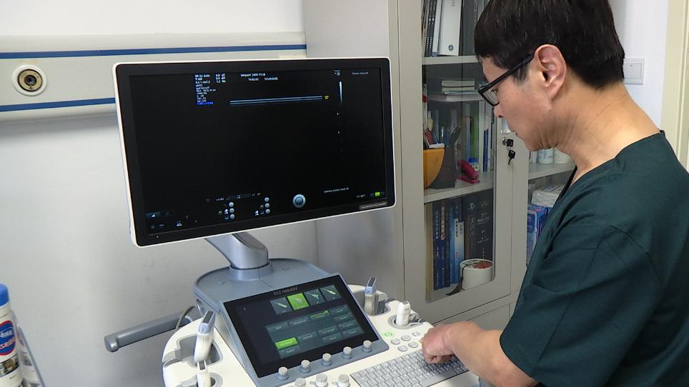 프로토콜 및 국제 전문가 합의에 따라 신생아 폐 질병 진단 포인트의 케어 폐 초음파에 대 한 지침