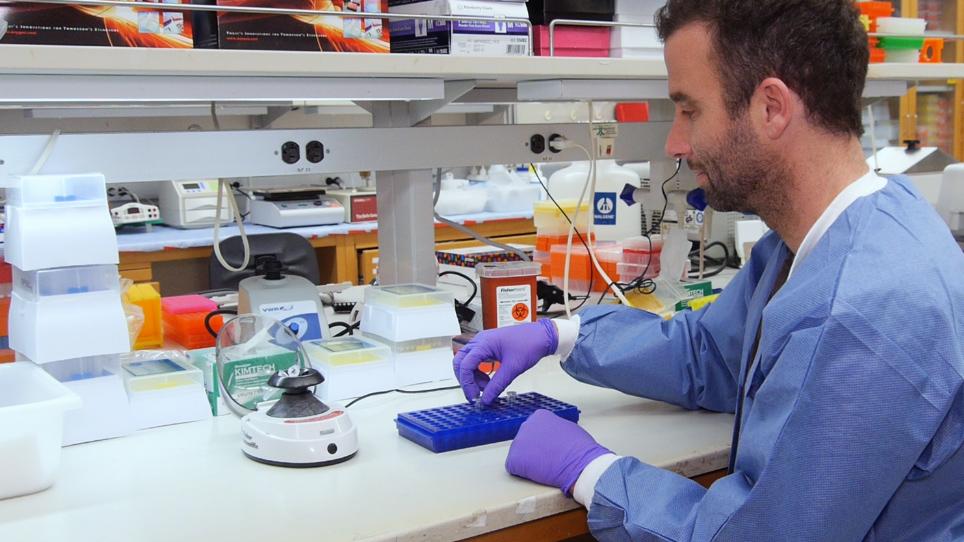 Overexpressing Long Noncoding RNAs Using Gene-activating CRISPR