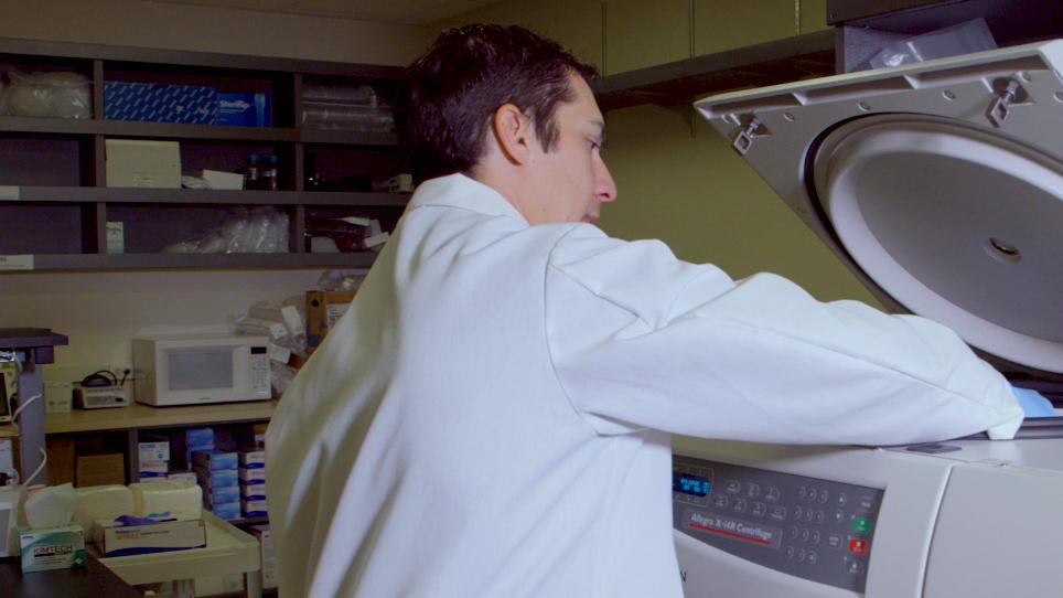 طريقة آلية لإجراء فحص النواة الدقيقة في المختبر باستخدام قياس تدفق تدفق التصوير متعدد الأطياف