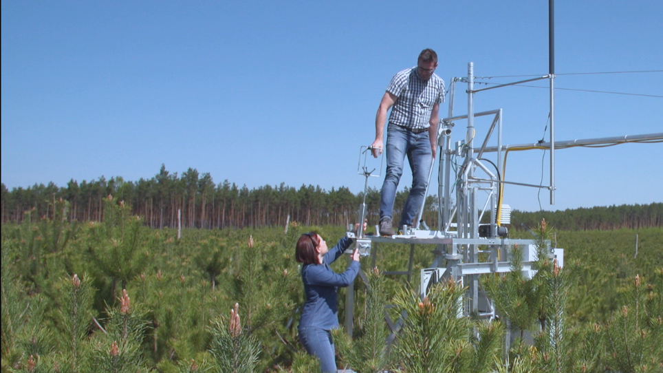 Measurements of CO<sub>2</sub> Fluxes at Non-Ideal Eddy Covariance Sites