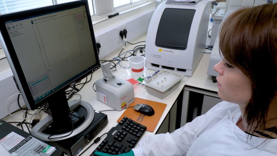 Pan-lyssavirus Real Time RT-PCR for Rabies Diagnosis