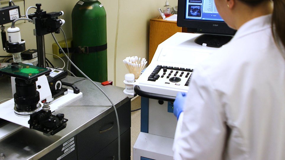 Ultrasonography of the Adult Male Urinary Tract for Urinary Functional Testing