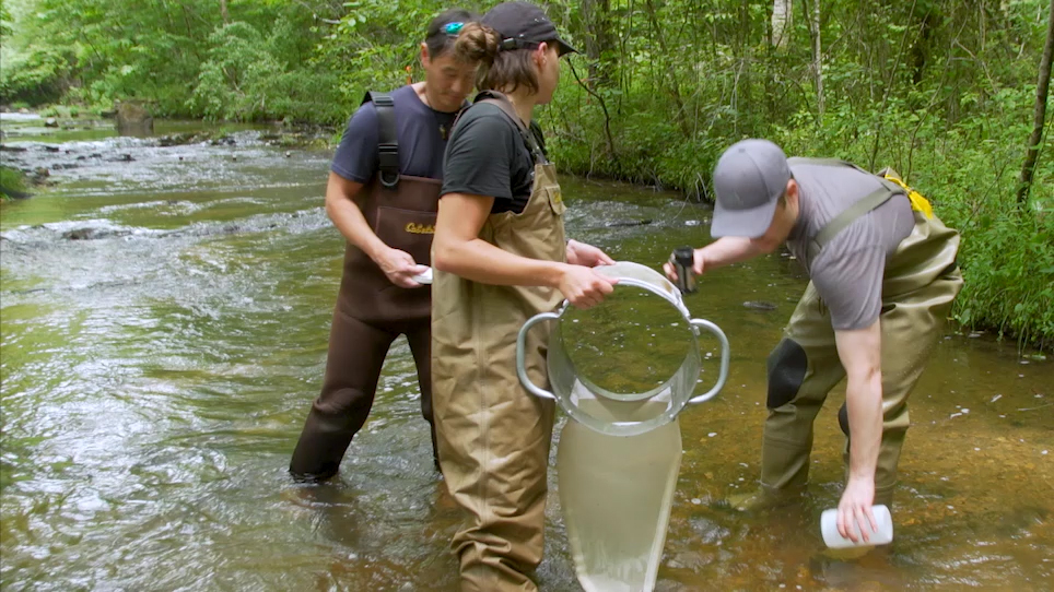 Modeling the Size Spectrum for Macroinvertebrates and Fishes in Stream Ecosystems