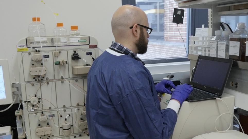 トリマーエピトーププレゼンテーションを必要とするワクチンに対する<em>大腸菌</em>の自己組織化タンパク質ナノ粒子の産生