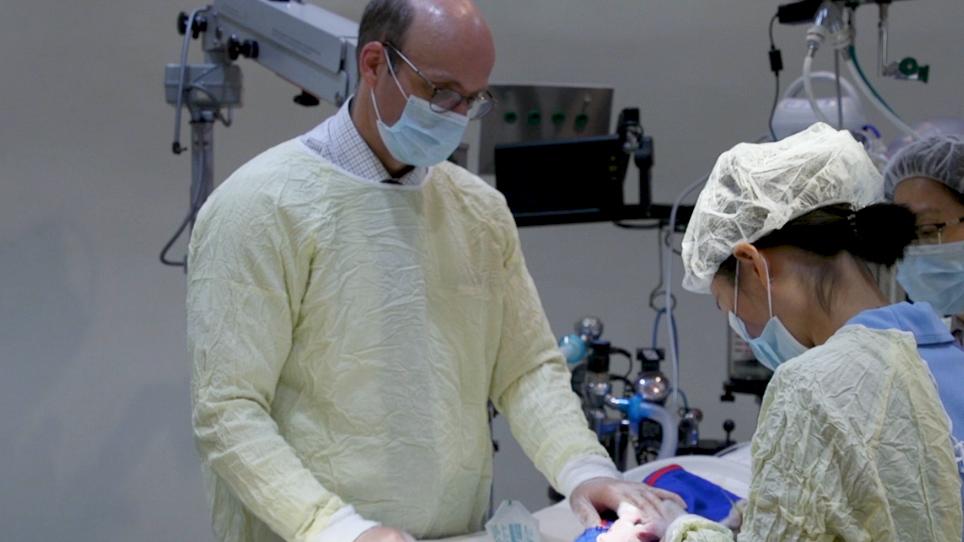 Estabelecimento de um modelo severo do olho seco usando dacryoadenectomy completo nos coelhos