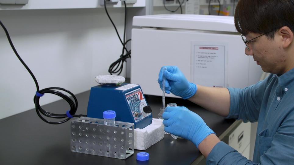 Traction mikroskopi integrert med materialer for chemotactic kollektiv migrasjon