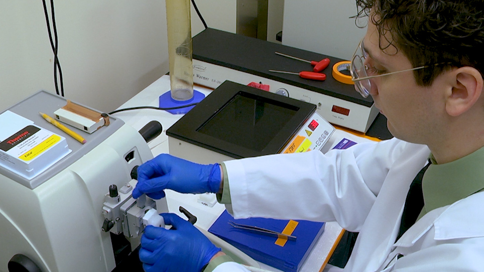 In Vivo Imaging of Transduction Efficiencies of Cardiac Targeting Peptide