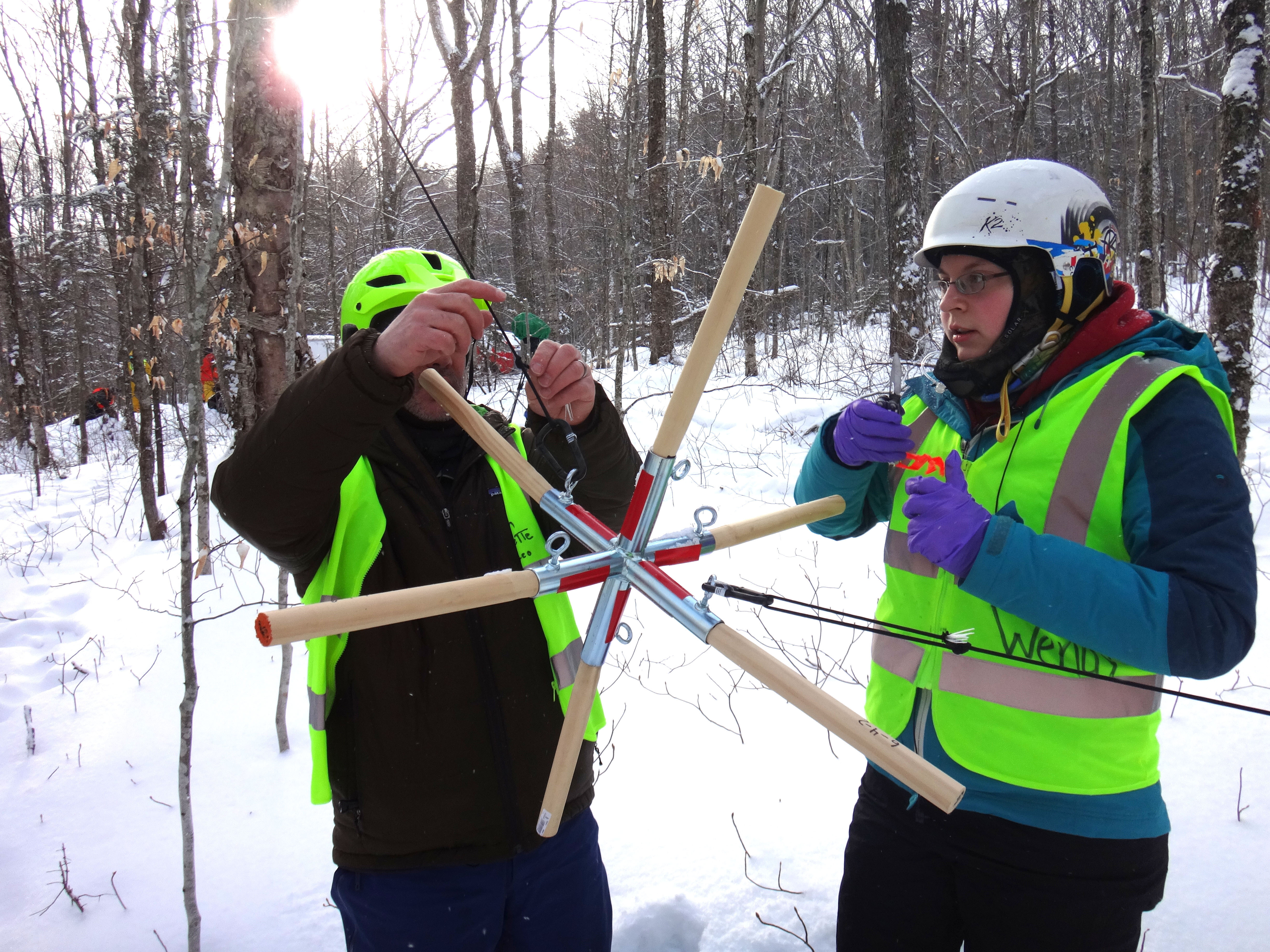 Simulating Impacts of Ice Storms on Forest Ecosystems