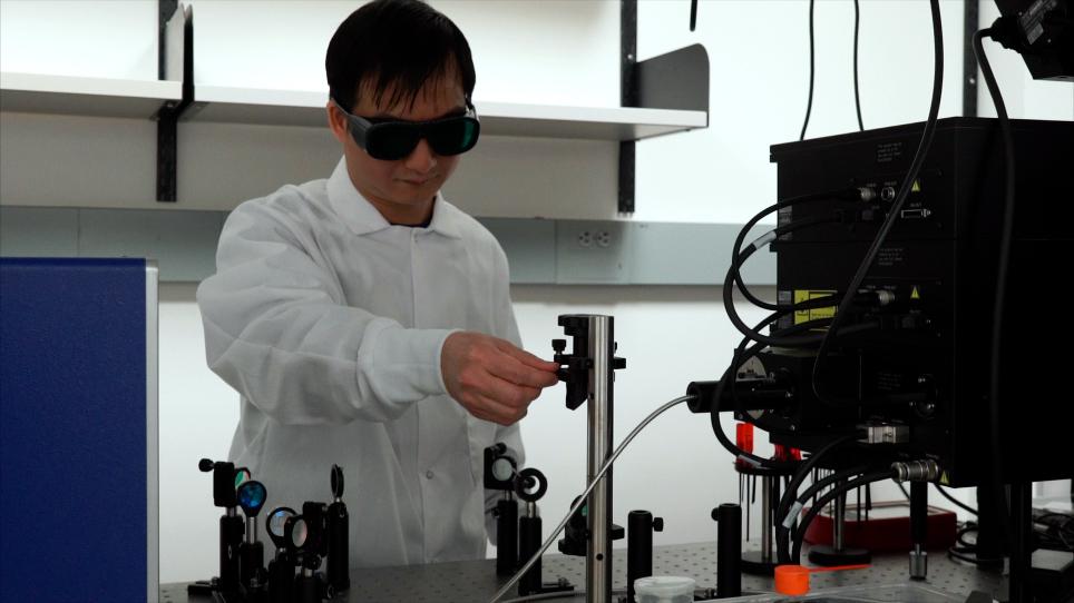 刺激されたラマン散乱顕微鏡を用いた <em>カエノラム型エレガンス</em> における脂質蓄積ダイナミクスの無標識イメージング