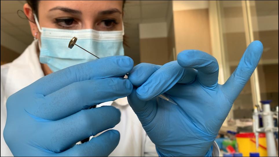 Perfil proteômico de EPS-urina através da Digestão FASP e Análise Independente de Dados